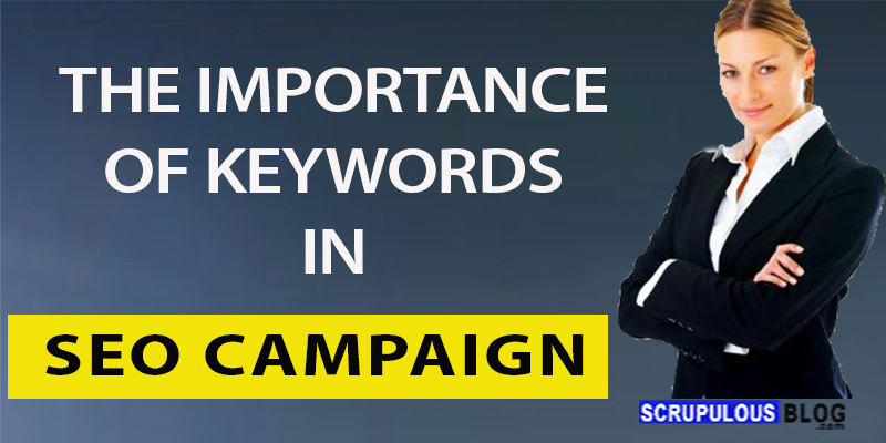 THE IMPORTANCE OF KEYWORDS IN SEO CAMPAIGN.
